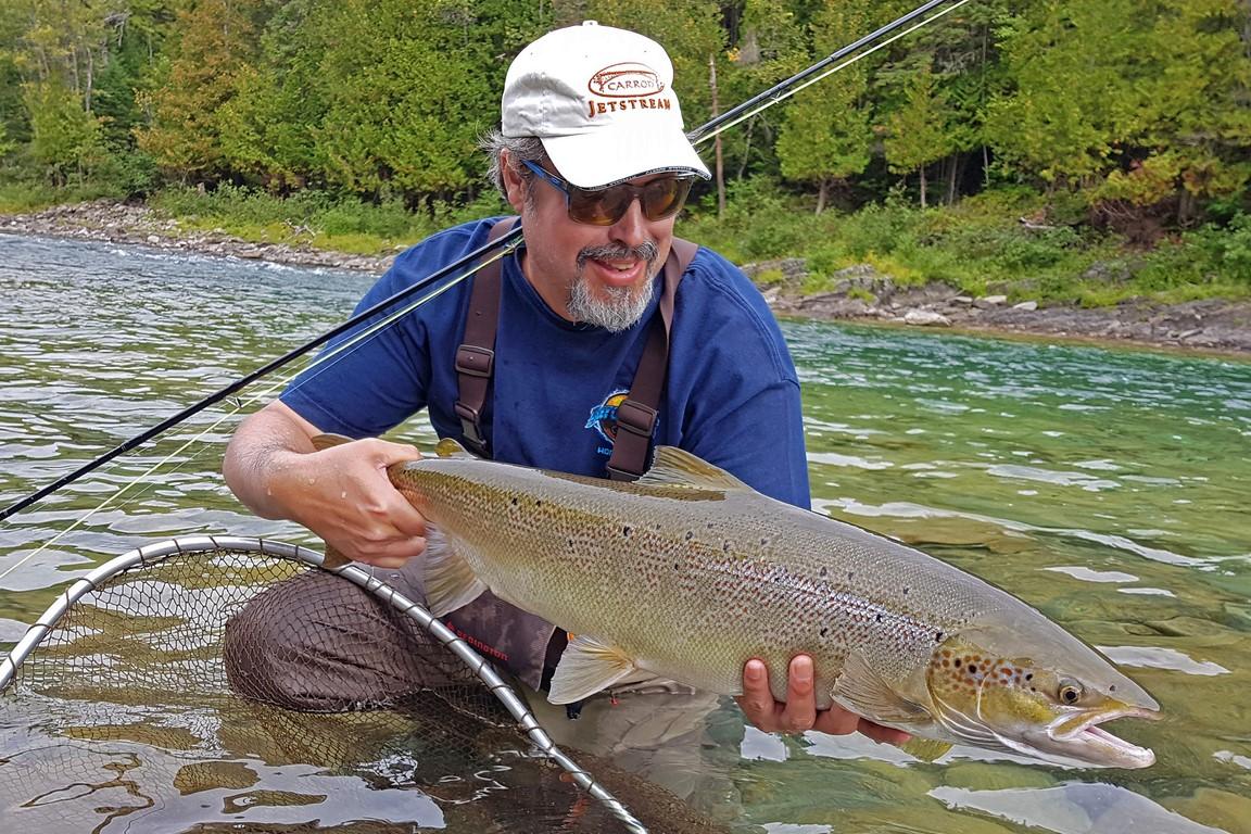 Bonaventure River salmon