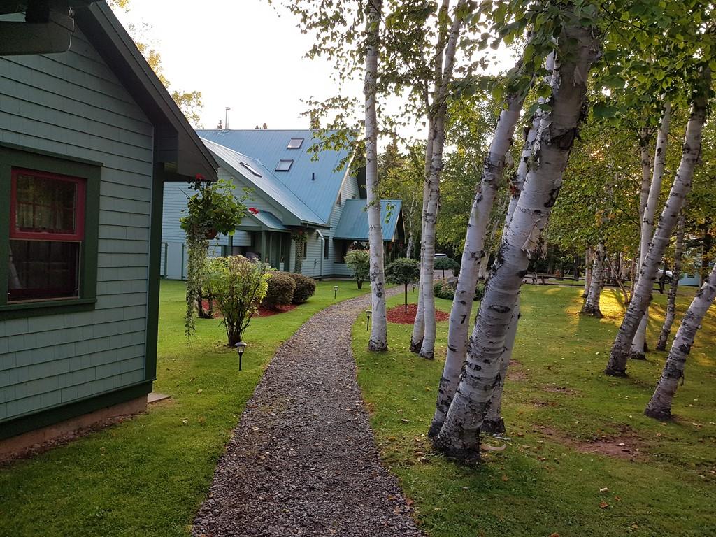 Camp Bonaventure