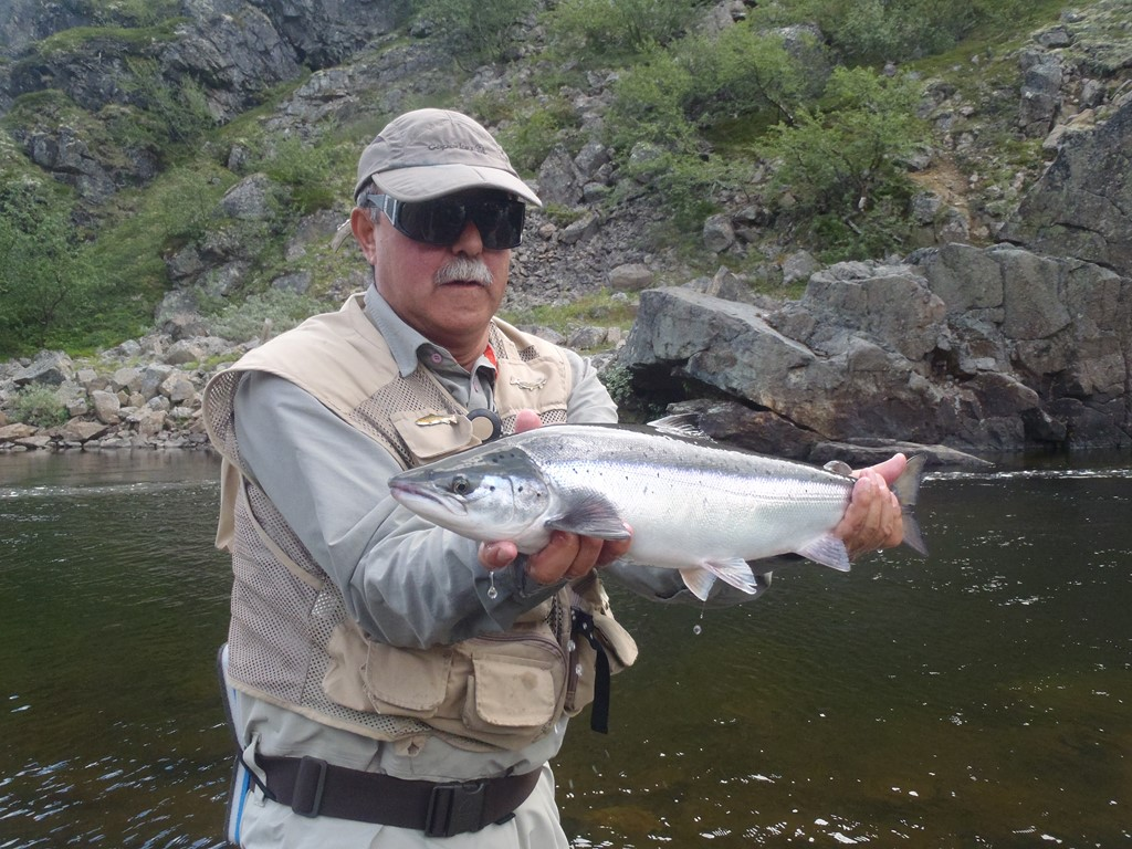 Sidorovka River salmon