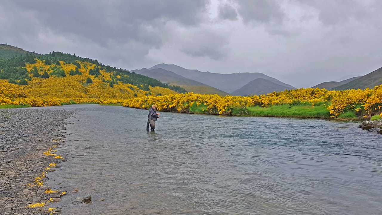 Pesca a mosca en Nueva Zelanda