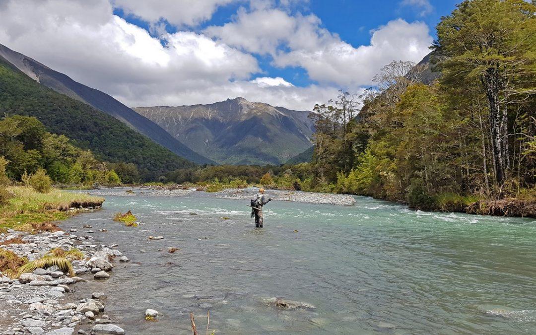 Río de Truchas de Trofeo en Nueva Zelanda