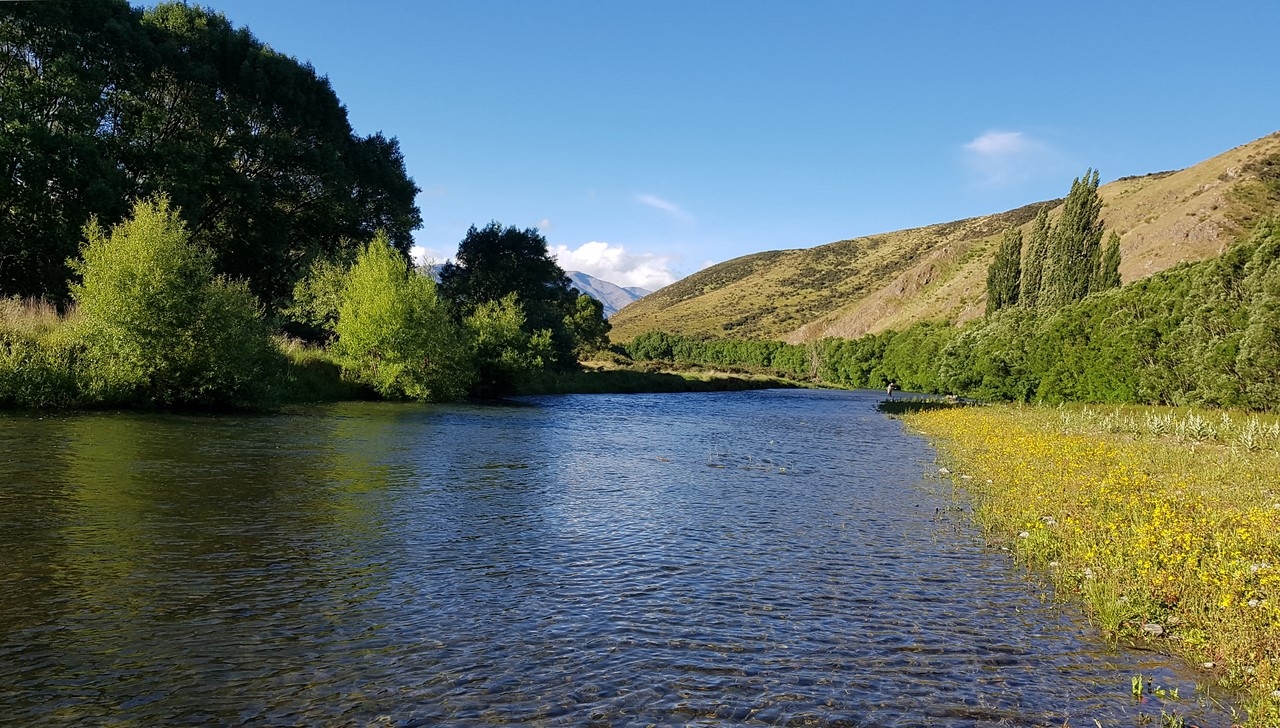 where to fish in New Zealand