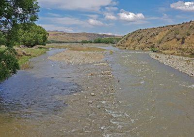 Río truchero en Nueva Zelanda