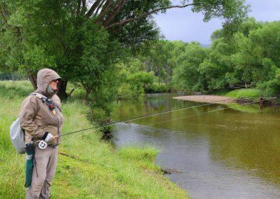 Guía de pesca en Nueva Zelanda