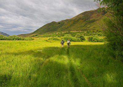 Camioo al río en NZ