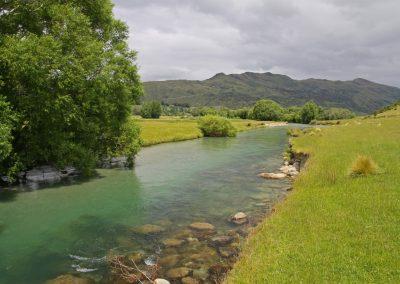 Río truchero en NZ