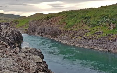Iceland 2020 Salmon Catch Statistics: Ranking of the Top 25 Rivers