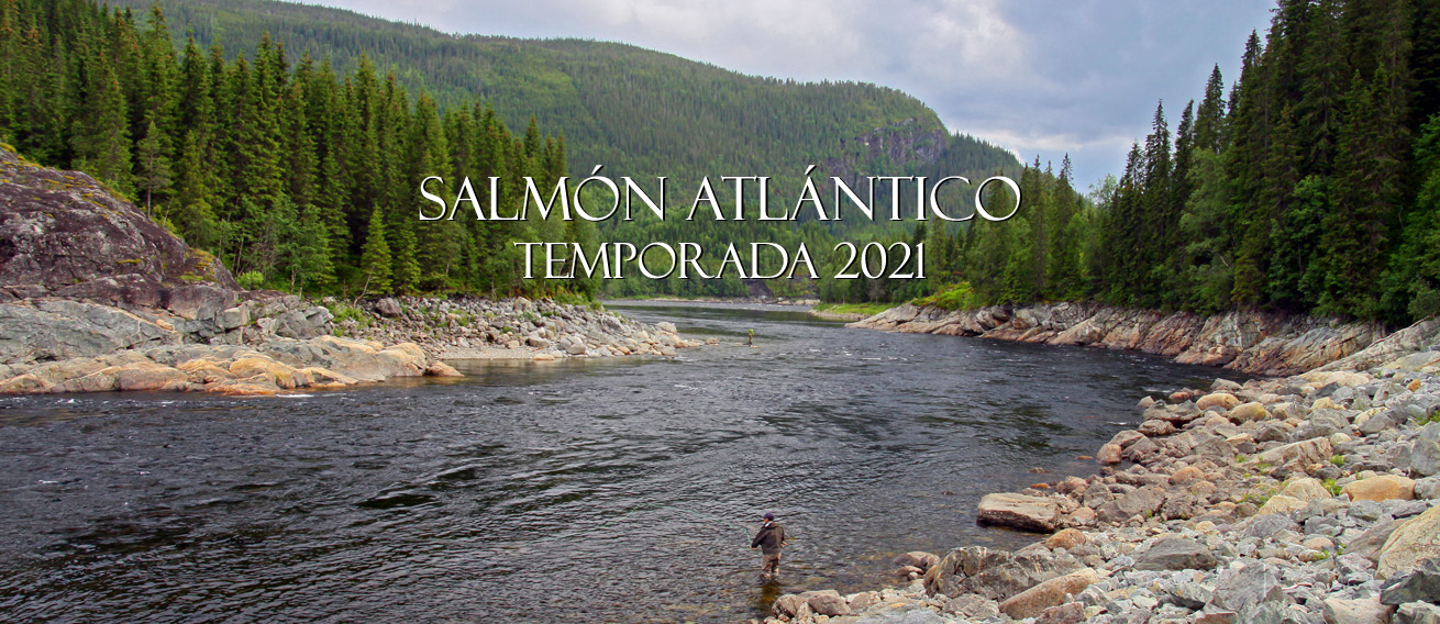 Atlantic Salmon Fishin